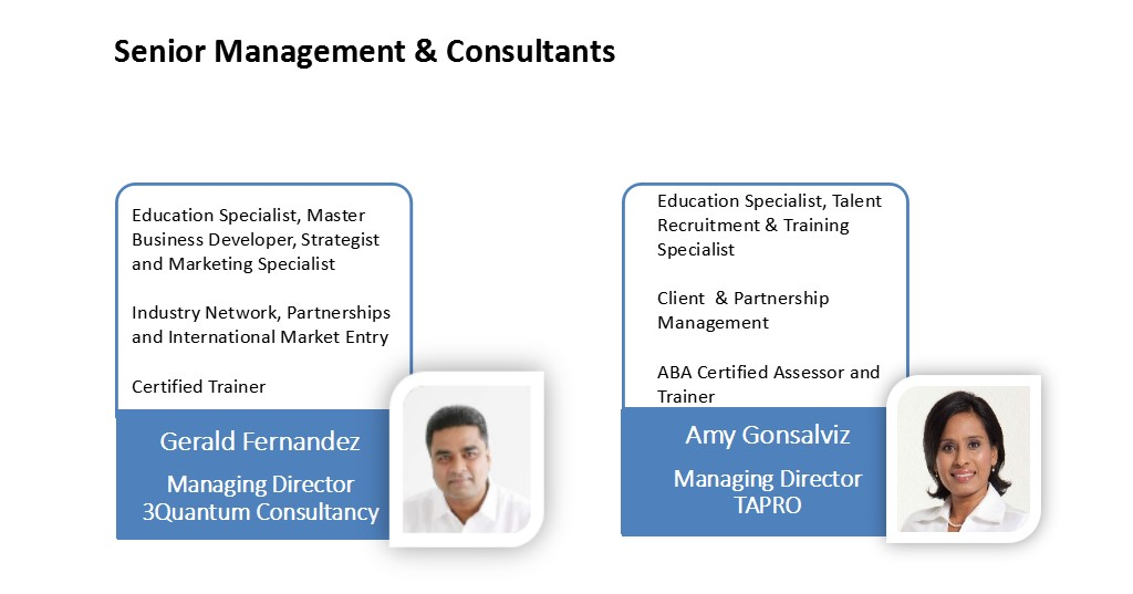 SeniorManagementConsultants